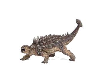 Ankylosaurus 1 - Ankylosaurus