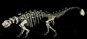 THERIGHTANKLYOSAUR 1 300x135 - THERIGHTANKLYOSAUR